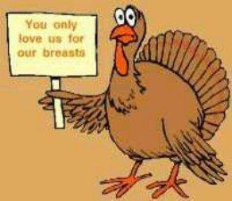 Funny Cartoon Turkeys Would You Rather Eat a Turkey